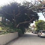 Foto Scenic Road Walkway