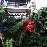 Foto de Pinecrest Gardens