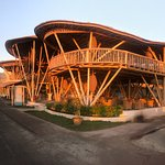 Фотография Pearl Beach Lounge