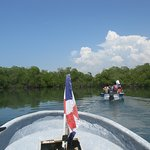 Riding through the mangroves
