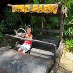 Foto di Dino Park