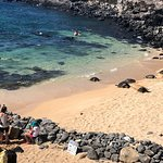 Explore Maui Nature - Maui Fantastic Tours