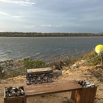 Yummy oysters beside the Swan River