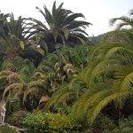 Foto Paradiso di Barchi