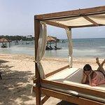 Beach Bed!