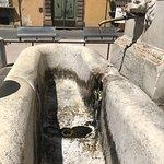 Fontana della Pupporona照片