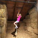Purina Farms의 사진
