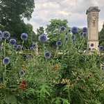 Jephson Gardens - The Flowers Are Beautiful