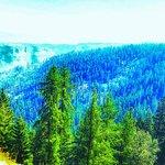 Billede af Kettle Valley Railway Trail