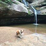 Cedar Falls Hiking Trail Foto