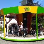 ภาพถ่ายของ Panorama Park Sauerland Wildpark