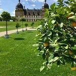 Foto de Schloss Seehof