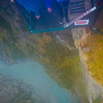 Shotover Canyon Swing & Canyon Fox Image