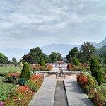 Mughal garden in full bloom