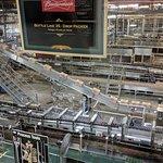 Budweiser Brewery Experience resmi