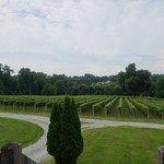 Foto de Galer Estate Vineyard and Winery