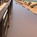Valokuva: Las Charcas Mud Baths