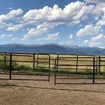 Foto The Diamond P Ranch