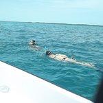 Minns Water Sports Foto