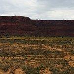 Condor nesting area