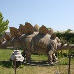 Дискавери Парк в Сиде (Манавгат)