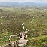 Foto de Cuilcagh Legnabrocky Trail