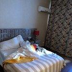 Punaise à l hôtel Reine Amelie