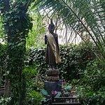 Thai Garden 2112照片
