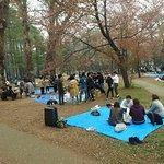 圓山公園照片