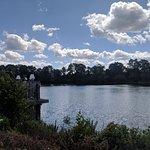ภาพถ่ายของ Heron on The Lake