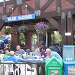 Blue Moose Patio