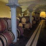 Photo de Provence and Wine