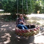 Poetry on the tyre swing