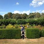 Looking towards gardens