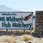 Foto de Mt. Whitney Fish Hatchery