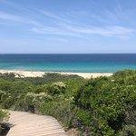 Lido Dog Beach
