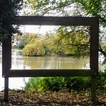 Giant Picture Frame to look through at view of Lake