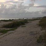 Photo of Turtle Beach
