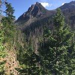 Pics along trail