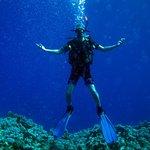 Photo de Octopus World Dahab