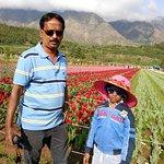 Foto van Indira Gandhi Tulip Garden