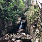 Foto de Menzenschwander Wasserfälle