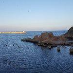 Photo of El Dorado Mar