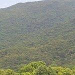 峴港猴山照片
