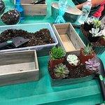 Building my planter