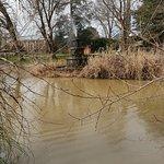 Φωτογραφία: Malmsbury Botanic Gardens