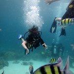 Bubba Diving Phuket의 사진