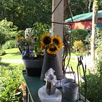 Bernetta's Place Bed & Breakfast Inn by the Lake Photo