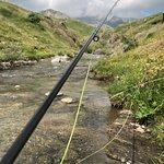 Salvelinus Spain Fly Fishing- Pyrenees Foto