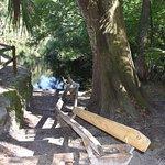 Canoe launch at Hillsborough River State Park.